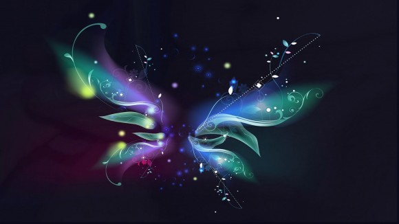 papillon coloré fond d'ecran